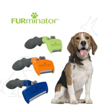 SHORT HAIR FOR DOG