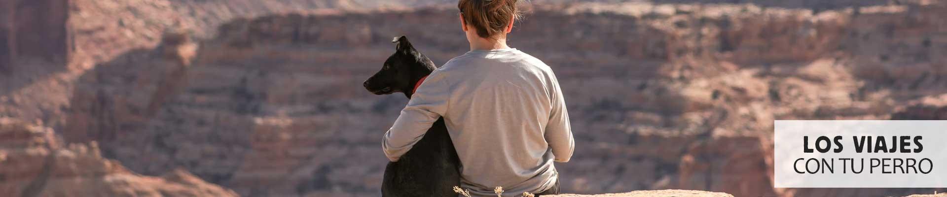 Te ayudamos con los viajes y transporte de tu perro